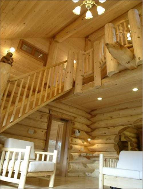Cozy log home